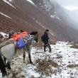 approche avec la mule jusqu'au premier col pour l'Illampu